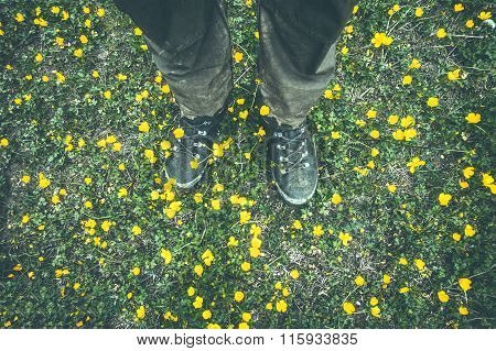 Man Feet trekking boots walking on grass with yellow flowers Outdoor