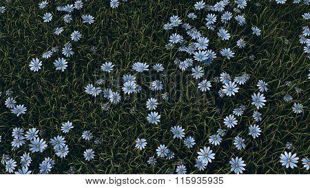 blue flowers in grass