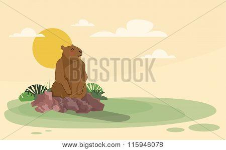 Groundhog Day Animal Wake Up Spring Holiday