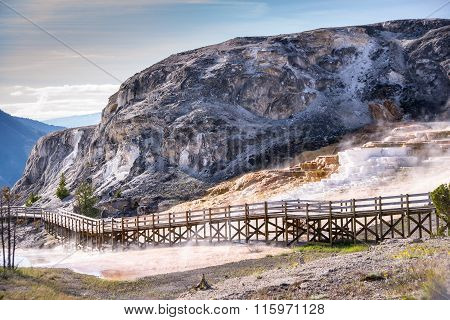 Mammoth Hot Springs Boardwalk