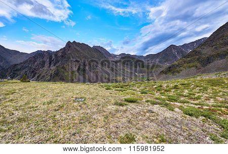 Area Of Alpine Tundra