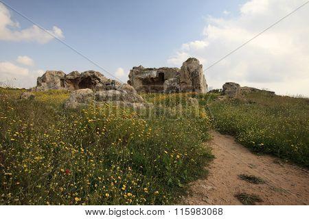 Tombs Of The Kings On A Flowering Field In Paphos. Cyprus