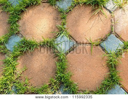 Colorful Rock Tile With Grass In The Garden