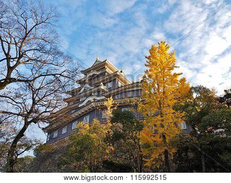 Okayama Castle and ginkgo tree