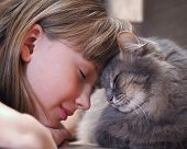 Постер, плакат: Cat and girl nose to nose