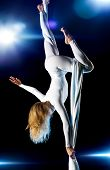 image of aerialist  - Young woman gymnast - JPG
