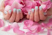 stock photo of nail salon  - Holding pink rose petals - JPG
