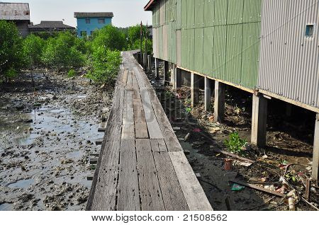 wooden walk way in the swamp village