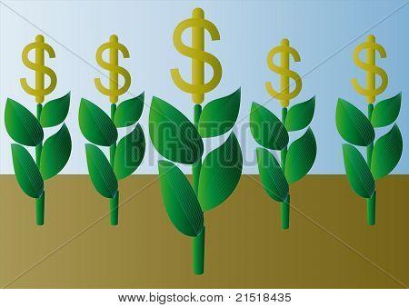 Plant-dollar