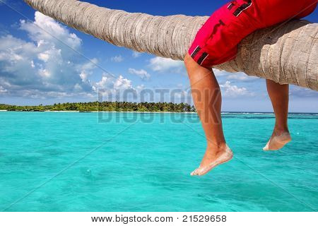 Caribbean inclined palm tree beach with male tourist legs sitting like riding the trunk