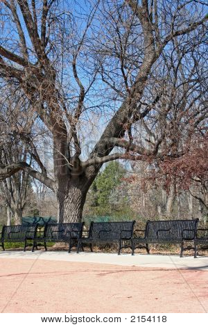 Spring Benches