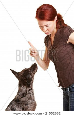 Woman Scolding Her Dog