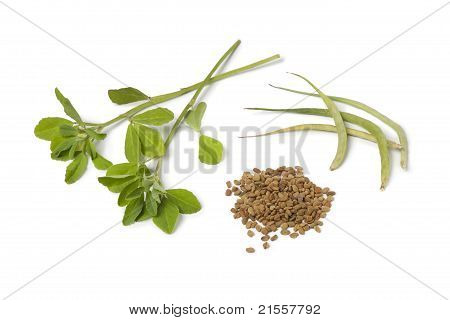 Fenugreek Leaves,pods And Seeds