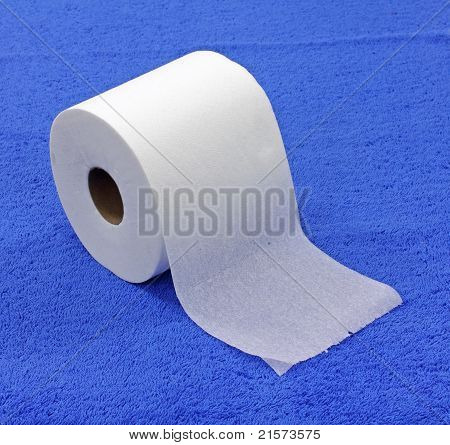Single Roll Of Toilet Tissue