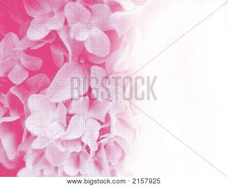 Halftone Flowers