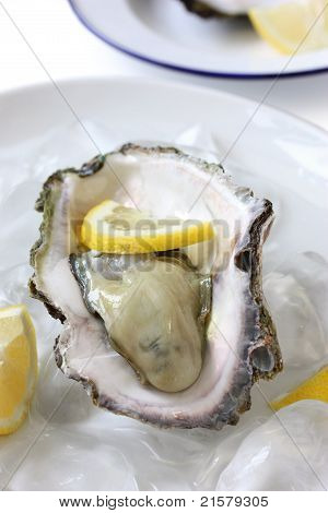 oyster served on ice with lemon