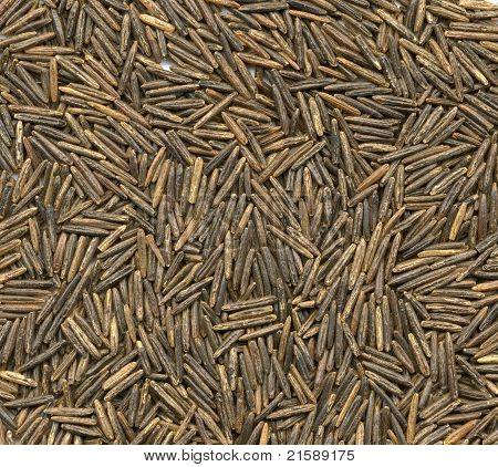 Black Rice High Resolution Close-up