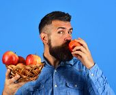 Guy Eats Harvest. Farmer With Calm Face Kisses Red Apple poster