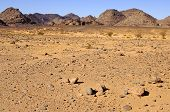 image of scant  - Rocky desert landscape with scarce vegetation in the Acacus Mountains Sahara desert Libya - JPG