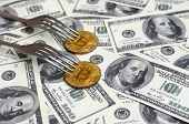 Bitcoin Getting New Hard Fork Change, Physical Golden Crytocurrency Coin Under The Fork On The Dolla poster