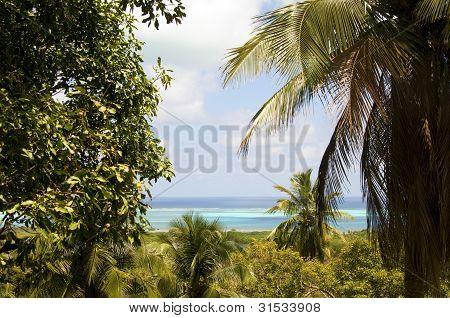 Panorama San Andres Island Caribbean Sea Colombia South America