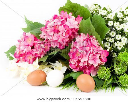 Easter eggs and spring flowers on a white background