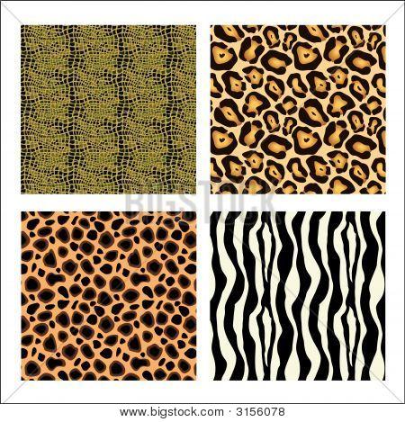 Animal Skins 1.Eps