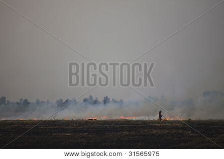 farmer burning his rice field cause of environment polution