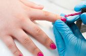 Manicure Nail Paint Pink Color. Nail Care. Closeup Of Beautiful Woman Hands Getting Manicure In Spa  poster