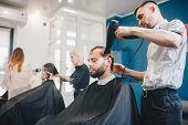 Young Bearded Man Getting Groomed Hairdresser With Hair Dryer Barbershop. Professional Hairdresser D poster