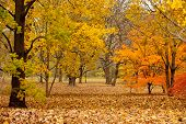 Rustic New England autumnal landscape in horizontal
