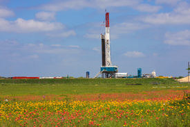 image of shale  - An oil drilling rig in the Eagle Ford shale area of Texas surrounded by flowers in a field - JPG