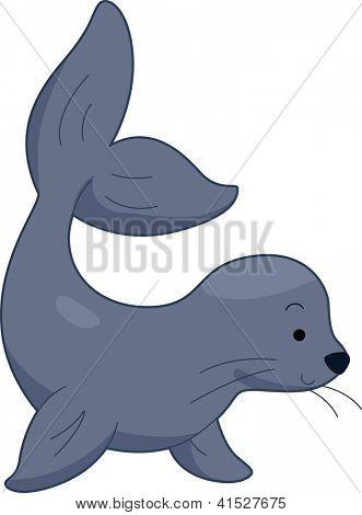 Illustration of a Sea Lion