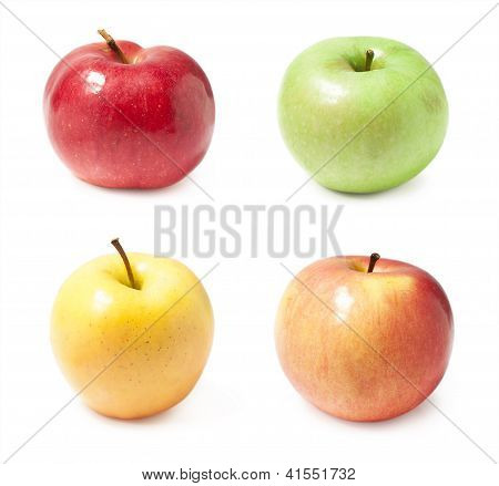 A Set Of Four Varieties Of Apples