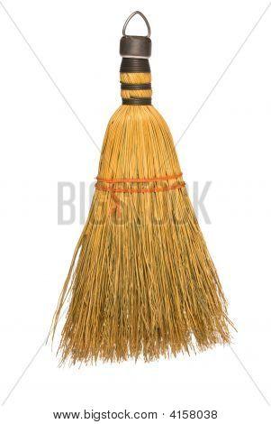 Wisk Broom