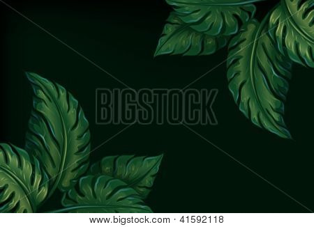 Illustration of eight leaves on a dark green background