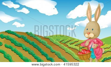 Illustration of a rabbit and a farm in a beautiful nature