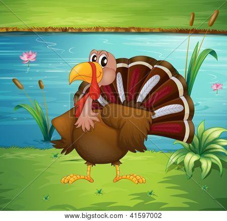 Illustration of a turkey near the pond