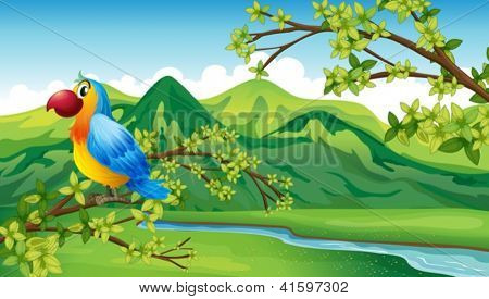 Illustration of a parrot near the riverbank