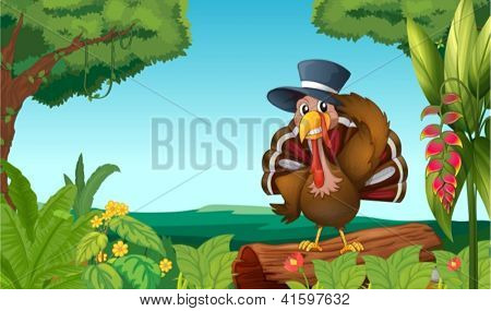 Illustration of a turkey in the forest