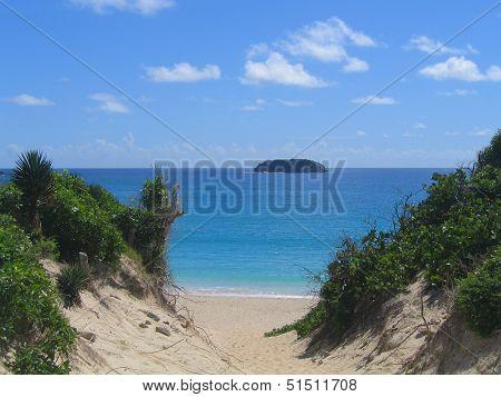 Saline beach, St. Barts, French West Indies