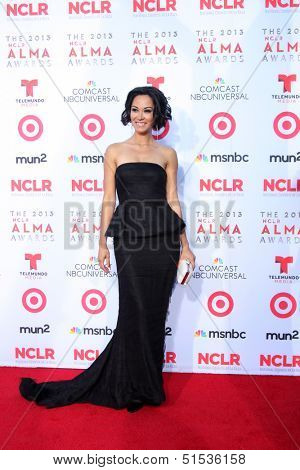LOS ANGELES - SEP 27:  Jael De Pardo at the 2013 ALMA Awards - Arrivals at Pasadena Civic Auditorium on September 27, 2013 in Pasadena, CA
