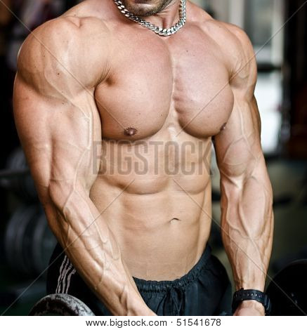 View Of Muscular Torso Of Male Bodybuilder In Gym