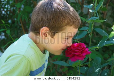 Boy Smelling Rose