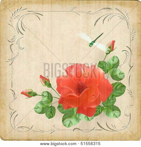 Vintage Flower Dragonfly Retro Card Border Frame