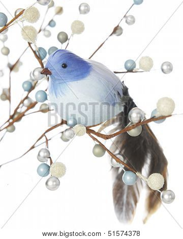 A feathery blue bird sitting in the branches of silver, blue and frosty white berries.  Shallow depth of field.  On a white background.