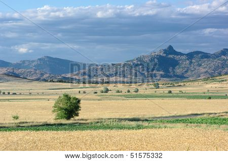 hinterland Of Republic of Macedonia near Topolcani