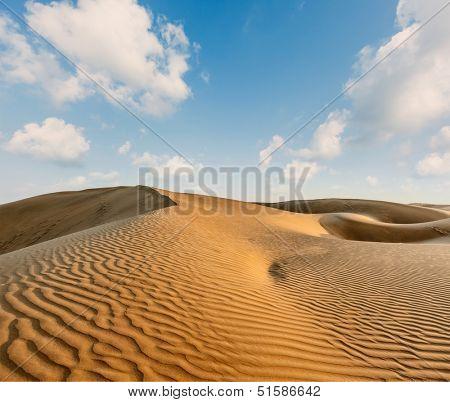 Dunes of Thar Desert. Sam Sand dunes, Rajasthan, India