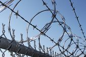 stock photo of spike  - Sharp razor wire tangled with barbwire on a secure fence - JPG