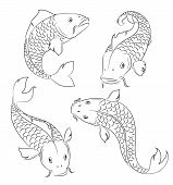 stock photo of koi tattoo  - Four carp on a white background - JPG